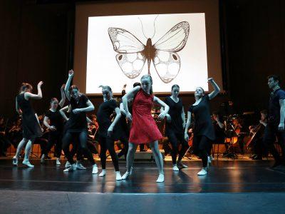 Tanzakademie OÖ – Ilja van den Bosch