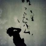 aec_birdville_3